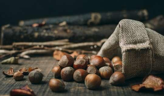 Benefícios provenientes das castanhas